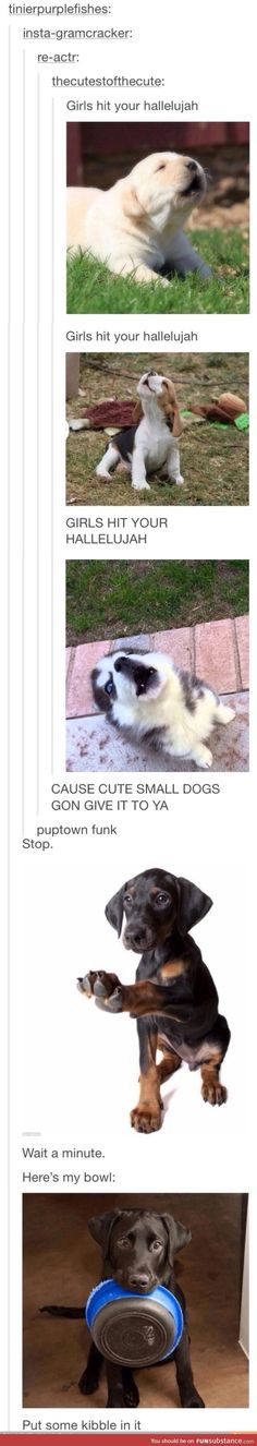 Puptown funk you up