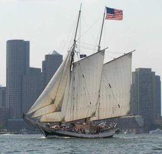 627 Best Ship sailing/Tall Ships/Clipper/Galleon/Ketch/Schooner