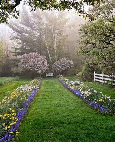 Blogger Pixz: Captivating Connecticut Garden