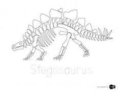 dino skelet kleurplaat zoeken dinosaurs