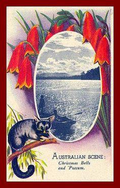 Vintage postcard from Australia