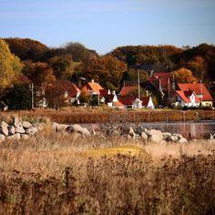 Udsigt til Brunshuse  #visitfyn #fyn #nature #visitdenmark #naturelovers #natur #denmark #danmark #dänemark #landscape #nofilter #assens #mitassens #vildmedfyn #fynerfin #assensnatur #motivation #vielskernaturen #visitassens #instapic #picoftheday #canon #natgeo #sky #waves #oktober #fall #autumn #seatrout