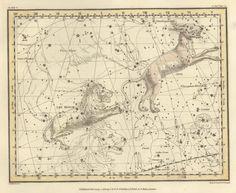 Galaxy, Constellation, Constellation print, Constellations of the Leo minor and Lynx, 43