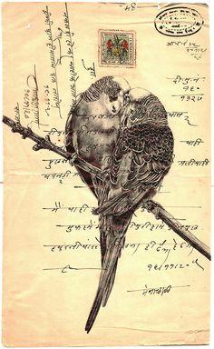 'encore' bic biro drawing on a antique Indian document on Behance Biro Art, Biro Drawing, Pen Art, Mark Powell, Envelope Art, Postcard Art, Bird Illustration, Illustrations, Mail Art