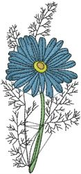 Plants Embroidery Design: Camomile Flower from AnnTheGran