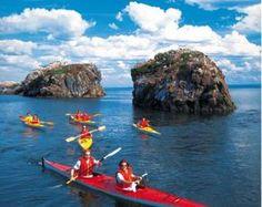 Kayak de mer sur le Fleuve