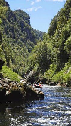 Franklin river, Tasmania, Australia