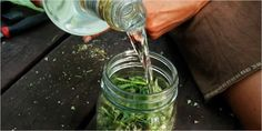 Saving for comments Use Your Stems 10 10 Creative Hacks For Reusing Your Marijuana Stems Weed Recipes, Cannabis Edibles, Hacks, Smoking Weed, Medicinal Plants, Herbalism, Stems, Tips