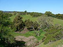 Santa Cruz Mountains - Wikipedia, the free encyclopedia
