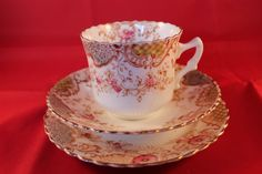 Perfect for that Tea and Biscuits. A very rare antique Art Nouveau Trio includes a cup, saucer and plate in a floral design with a number 041. Made by Royal Albert, Thomas C Wild & Co., Albert Works, Longton. | eBay!