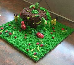 Bug theme cake. #kids party