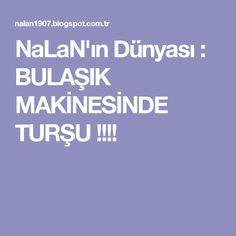 NaLaN'ın Dünyası : BULAŞIK MAKİNESİNDE TURŞU !!!!