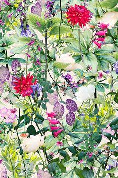 SEP | Garden | Colourway 1 © Shelley Steer