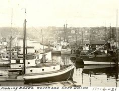 Fishing boats, Lake Union, Seattle, 1921
