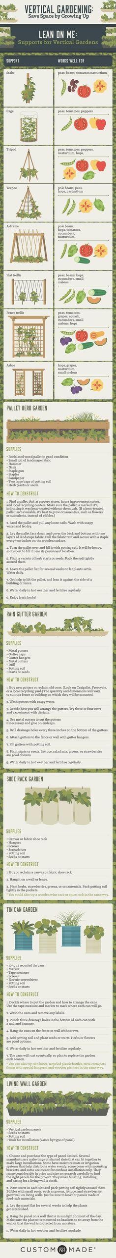 How to grow a vertical garden #gardenvinesbeautiful #howtourbangarden