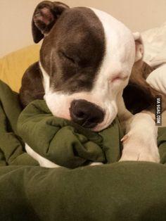 She sucks on blankets every night to fall asleep.