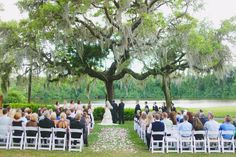 Innisbrook ceremony. Chair set up and oak tree.