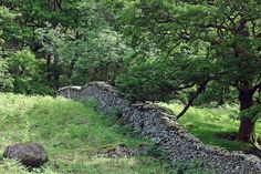 Dry stone wall. I like it in an open field like this where it just extends out of sight over the hill, and on into the woods.