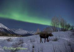 Aurora Borealis - Girdwood, Alaska