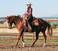 This simple walk/back-up/stand exercise will sharpen your cueing plus boost your horse's responsiveness.