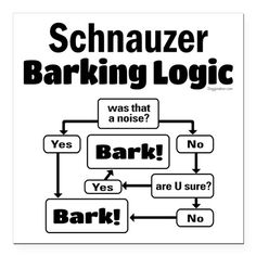 "Schnauzer logic Square Car Magnet 3"" x 3"" on CafePress.com"