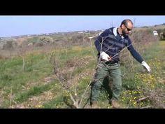 YouTube Military Jacket, Gardening, Youtube, Field Jacket, Lawn And Garden, Military Jackets, Youtubers, Youtube Movies, Horticulture