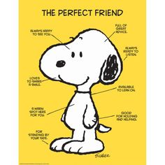 "Peanuts Quotes On Friendship and Eureka Classroom Posters, Measures: "" X "" - Peanuts The Perfect Friend"