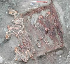 A DNA study carried out on the bones and teeth of Scythian skeletons found in the Altai mountains of Mongolia is revealing the genetic blending between European and Asian people. Starting in the 7th to 2nd centuries BCE – and the coming of the Scythian culture--the skeletons display a neat 50-50 blend of lineages. Bronze-Age skeletons, dating from the seventh to the 10th century BCE, showed no sign of mixed lineages: those from the western side of the mountains were European, eastern, Asian.