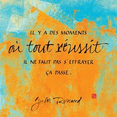 """""""there are moments where everything succeeds : do not be scared, it changes"""" - Jules Renard"""