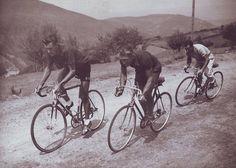 .....Bobet, Desbat & Bidot, TdF, 1950