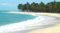 Praia do gunga, Localizada em Maceió, Alagoas
