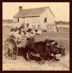 SLAVES, EX-SLAVES, and CHILDREN OF SLAVES IN THE AMERICAN SOUTH, 1860 -1900 (24)