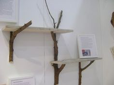 creativity with tree branches | Homespun Artist: Wood Hooks and Shelves