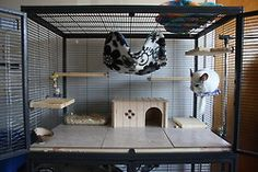 chinchilla cages | Tumblr