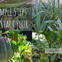 Simple steps to start gardening   Green Thumb Thursday