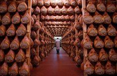 Schnitzel, Burger, Putenbrust: Unser täglich Fleisch gib uns heute |   Rund 60 Kilogramm Fleisch verschlingen die Deutschen pro Kopf und Jahr - die überwältigende Mehrheit gibt an, mehrmals die Woche Fleisch zu essen. Aber wie gesund ist so viel Fleisch, und wo kommt es her? Auf diese Fragen gibt es Antworten von Umwelt- und Verbraucherschützern. Nur hören wir sie nicht gerne.