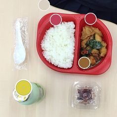 Cute food # 2: phad krapao, boiled egg, and cantaloupe milk!! (reupload bc a girl's gotta keep up with the trends)