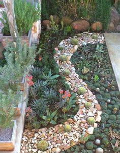 24 Ideas zen succulent garden landscape design for 2019 Succulent Rock Garden, Succulent Landscaping, Succulent Gardening, Backyard Landscaping, Landscaping Ideas, Succulent Containers, Garden Terrarium, Container Flowers, Succulent Plants