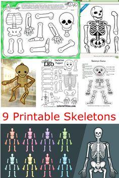 9 Printable Skeleton Crafts for Kids and Halloween!