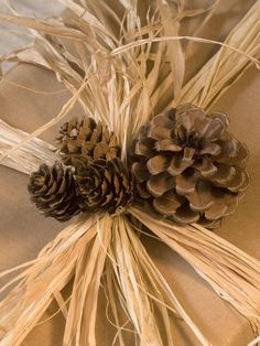 Pinecones and Raffia    Tie the gift with raffia, wrap a little thin wire around the base of each cone and tie them to the bow.