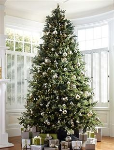 The easeful silhouette of the Balsam Hill Fraser Fir, along with its vibrant green color and silver sheen, will lend intimate warmth to your home interior.