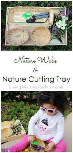 A nature cutting tray is a fun, easy-to-prepare way to combine a nature walk with scissor cutting work . a great Montessori-inspired activity for toddlers and preschoolers - Living Montessori Now Cutting Activities, Fine Motor Activities For Kids, Toddler Learning Activities, Nature Activities, Montessori Activities, Spring Activities, Montessori Trays, Montessori Materials, Free Activities