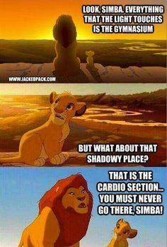 Lion King gym