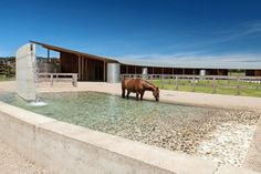 Equestrian Centre, Merricks by Seth Stein Architects (London) in association with Watson Architecture + Design (Melbourne). Dream Stables, Dream Barn, Horse Stables, Horse Farms, Equestrian Stables, Horse Arena, Horse Ranch, Horse Property, Horse Pictures