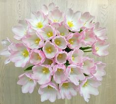 チューリップは春の花です。 Tulips are flowers of spring. Home And Living, Tulips, Spring, Flowers, Plants, Jewelry, Jewlery, Jewerly, Schmuck