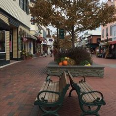 Washington Street Gallery - Cape May, NJ, United States. Cape May shopping district