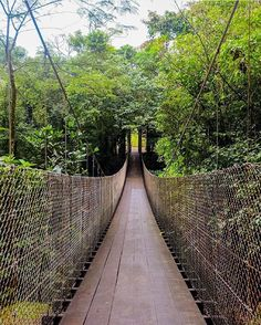 Just hanging out in Costa Rica!  The hanging bridges of La Fortuna via @laviwashere! #costarica #adventures #crexperts