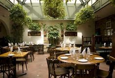 lemonia in primrose hill greek restaurant - Awesome place!