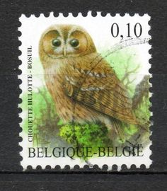 Owl poststamp Belgium.