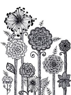 Zentangle Flower Patterns - Bing Images